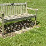 Dedicate a bench