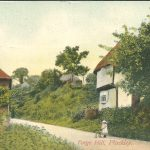 Pluckley's Community Chronicle